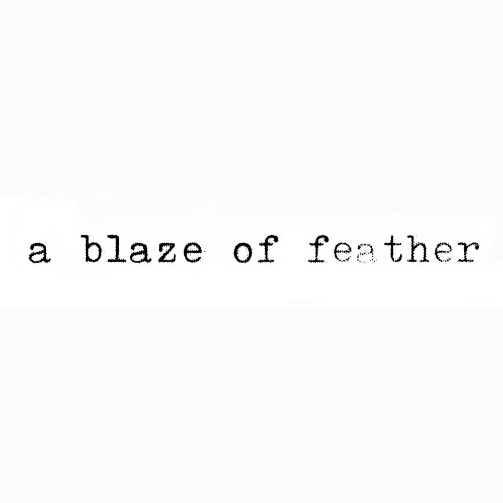 A Blaze Of Feather